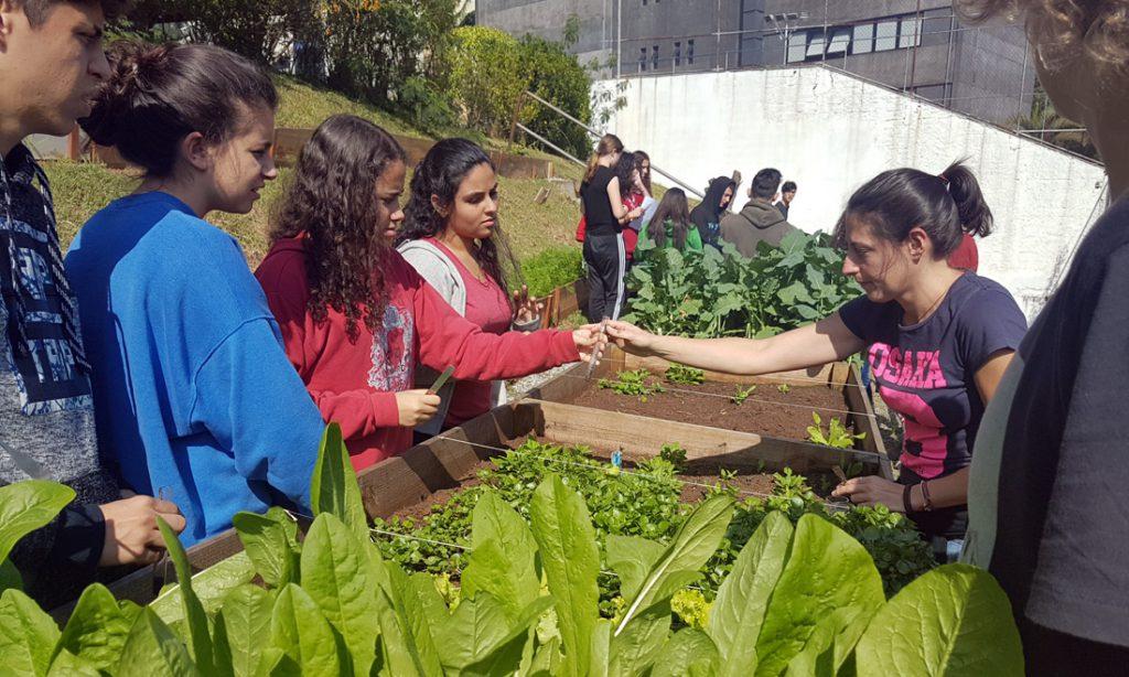 Conhecimento aplicado: alunos fazem pesquisa de pH em horta orgânica